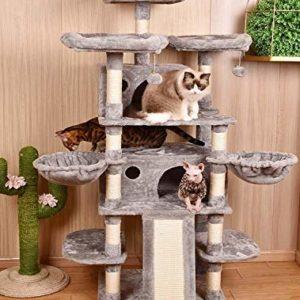 Amolife Heavy Duty 68 Inch Multi-Level Cat