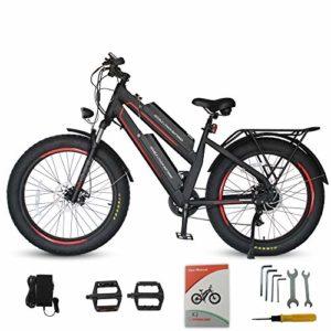 Dynalion Electric Mountain Bike Two Detachable Lithium Batteries